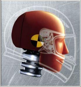 crash-dummy-head